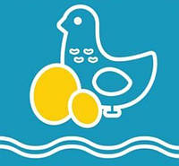 Ракушка морская для кур
