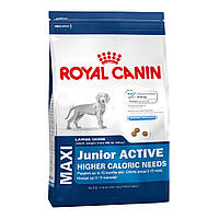 ROYAL CANIN MAXI JUNIOR ACTIVE (ЮНИОРЫ КРУПНЫХ ПОРОД АКТИВ) корм для щенков до 15 месяцев 15КГ