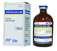 Энроксан-100, 10 мл, ВЕТЕКО