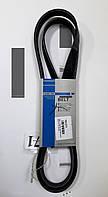 Ремень двигателя Thermo King SL; 781271; Оригинал
