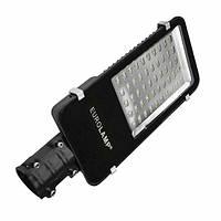 Уличный классический светодиодный светильник EUROLAMP SMD 100W 6000K