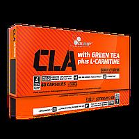 Конъюгированная линолевая кислота Olimp CLA with Green Tea (60caps) жиросжигатель