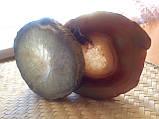 Пепельница из натурального агата   Мыльница из натурального камня., фото 8