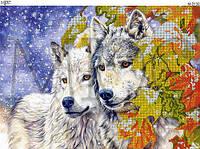 """Схема для вышивки бисером """"Снежные волки"""""""