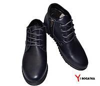 Мужские зимние кожаные ботинки,PAV, темно синие, шнурок + змейка