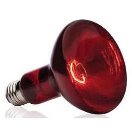 Лампы инфракрасные