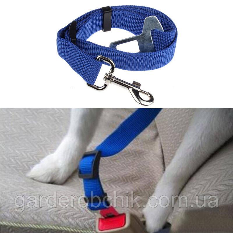 Ремень безопасности в автомобиле для собаки, кошки. Автокресло для животных