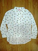 Рубашки для девочек оптом, Glo-Story, 98-128 рр.