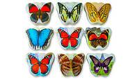 Полотенце прессованное бабочки