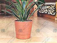 Горшок для цветов с подставкой INTERPLAST Terranova D-12см (0814)
