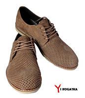Мужские нубуковые туфли FRANK, цвет латте, перфорация