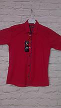 Рубашка красная для мальчиков на рост 140-170