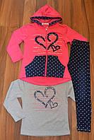Трикотажный костюм-тройка c котоновыми лосинами  для девочек Grace. Оптом,Размеры116-146 см,
