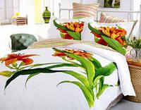 Комплект постельного белья евро размера Aliza-white