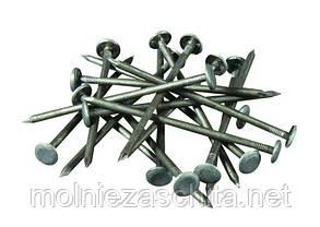 Гвозди шиферные 120х5 (от 1 кг)