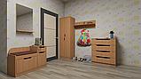 Шкаф Диана маленький под верхнюю одежду в офис или коридор, фото 4