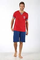 Домашний трикотажный костюм мужской шорты с футболкой