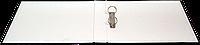 Реєстратор А42R25PP зм. інд., зелений
