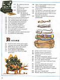 Велика дитяча енциклопедія, фото 5