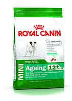 ROYAL CANIN MINI ADULT 12+ (СОБАКИ МЕЛКИХ ПОРОД ЭДАЛТ 12+) корм для собак от 12 лет 0,8КГ
