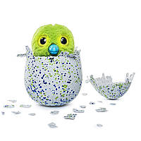 Интерактиваня игрушка Пингвина Драко в яйце - Hatchimals Draggles, Spin Master