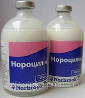 Нороциллин,  100 мл (Норбрук)