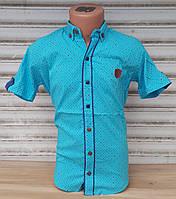 Стильная рубашка(шведка) для мальчика 6-14 лет (бирюза01) (пр. Турция)