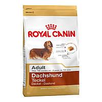 Royal Canin DACHSHUND 28 ADULT ТАКСА СТАРШЕ 10 МЕСЯЦЕВ 1,5КГ