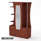 Прихожая Татьяна ДСП со шкафом, открытыми полками и вешалками, фото 5