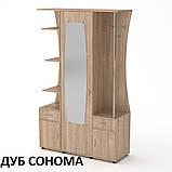 Прихожая Татьяна ДСП со шкафом, открытыми полками и вешалками, фото 7