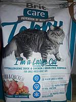 Сухой корм для кошек Brit Care