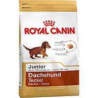 ROYAL CANIN DACHSHUND 30 JUNIOR (ТАКСА ДЖУНИОР) корм для щенков до 10 месяцев 1,5КГ