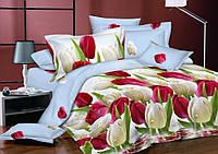 Постельное белье Тюльпановый рай, сатин -Семейное с простыню на резинке 180*200*34