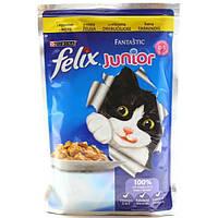 Консервы Felix Junior для котят с курицей в желе, 100 г (20 шт)