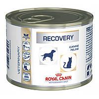 Влажный лечебный корм Royal Canin Recovery для собак и кошек 0,195КГ