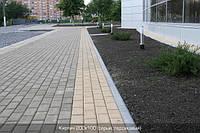 Тратуарная плитка Золотой мандарин кирпич стандартный (200х100) Персиковый цвет на сером цементе нагрузка:4 см(94 кг/м2)Область применения: пешеходная