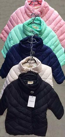 Короткая стеганная демисезонная женская куртка весна-осень, фото 2