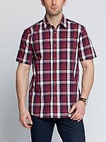 Мужская рубашка LC Waikiki с коротким рукавом гранатового цвета в белую и синюю полоску, фото 1