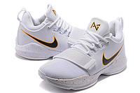 Мужские баскетбольные кроссовки Nike Zoom PG 1 (Home), фото 1