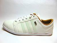 Мужские кроссовки Original  Adidas NEO (White), фото 1