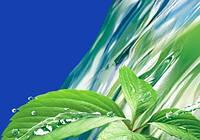 Вода-источник жизни! Вода в организме человека. ЧАСТЬ 1