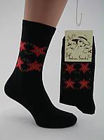 Носки женские разноцветные хлопок черные с красными звездами Ж-900025