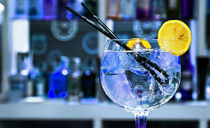 Ароматизатор «Gin and Tonic» Baker Flavors Джин Тоник