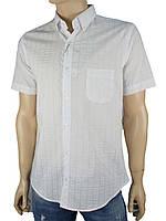 Рубашка мужская Love Man 0270 марл. разные цвета