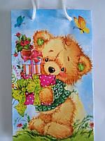 Пакет подарочный бумажный малый 11х18х6 (21-045)