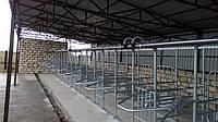 Установка доильная для летнего лагеря УДС, фото 1