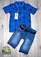 Костюм летний для мальчика: футболка синяя электрик и джинсовые шорты с поясом