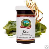 Бурая водоросль (йод,бурая водоросль,щитовидная железа) / Kelp