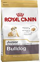 ROYAL CANIN BULLDOG 30 JUNIOR (БУЛЬДОГ ДЖУНИОР) корм для щенков до 12 месяцев 12КГ