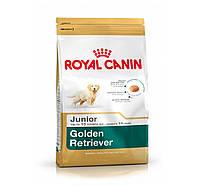 Сухой корм Royal Canin Golden Retriever Junior для щенков, 12КГ